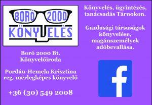 boro_hirdeteseps